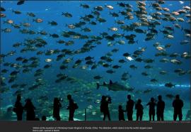 nytl_largest_aquarium_china