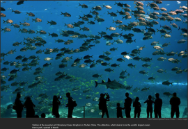 nytl_largest_aquarium_china